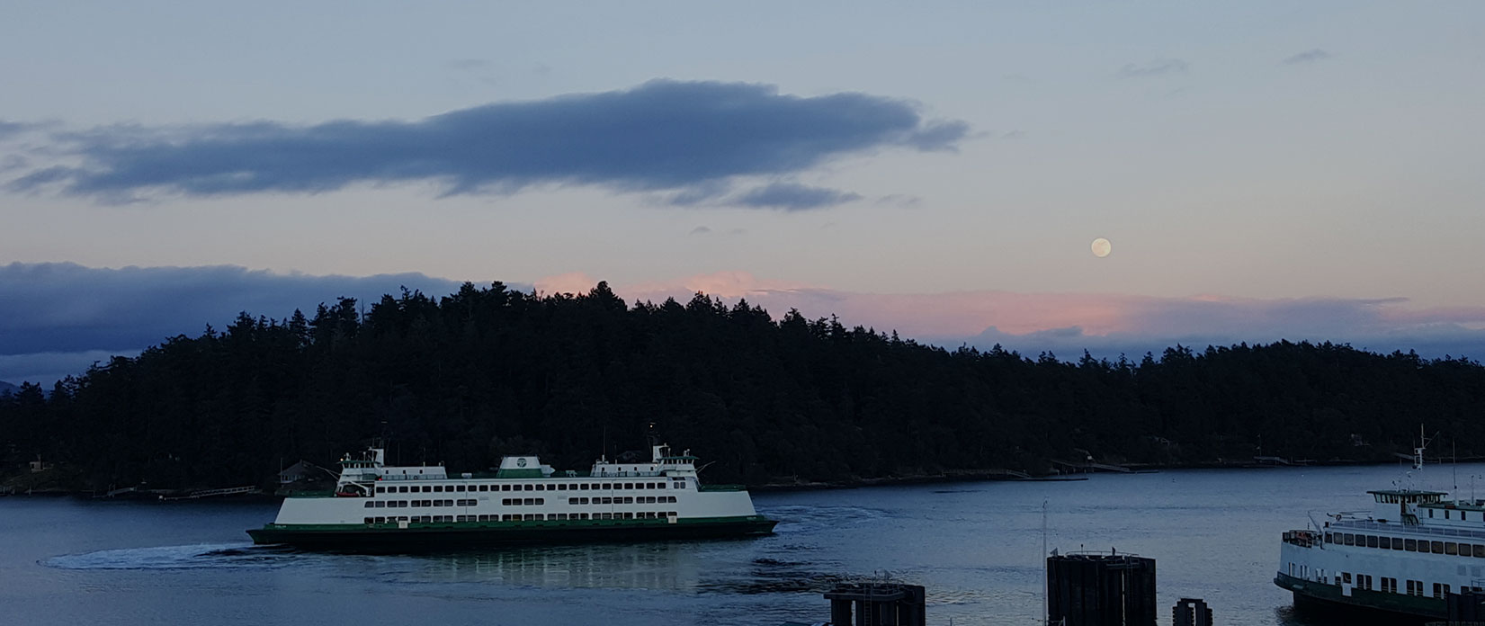 ferry in Friday Harbor
